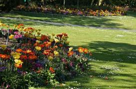 x179_a79d-5_jardin-des-plantes_cc-smilla4